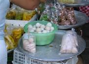 turtle_eggs_for_sale.jpg