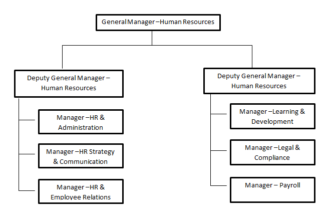 E:\4th Year\2nd Semester\IPHCM\Images\Department structure.PNG